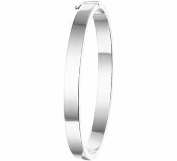 Slavenband scharnier massief rechthoek 6 x 60 mm zilver