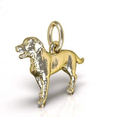 Ashanger Hond 3D, geelgoud